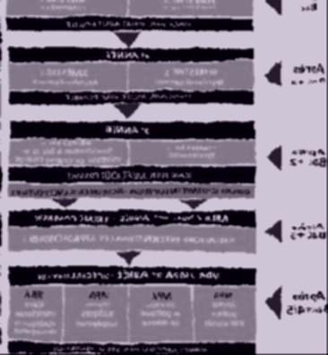 formation-bachelor-web.jpg